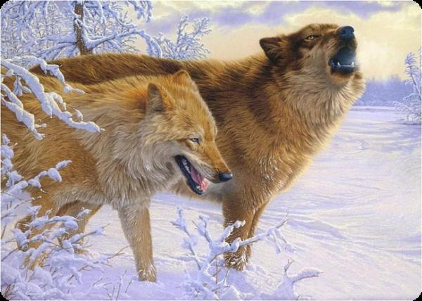 http://wolvessignatureblood.rolka.su/files/000a/de/50/31703.png