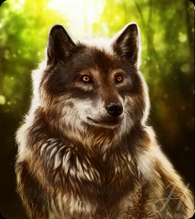 http://wolvessignatureblood.rolka.su/files/000a/de/50/68556.png